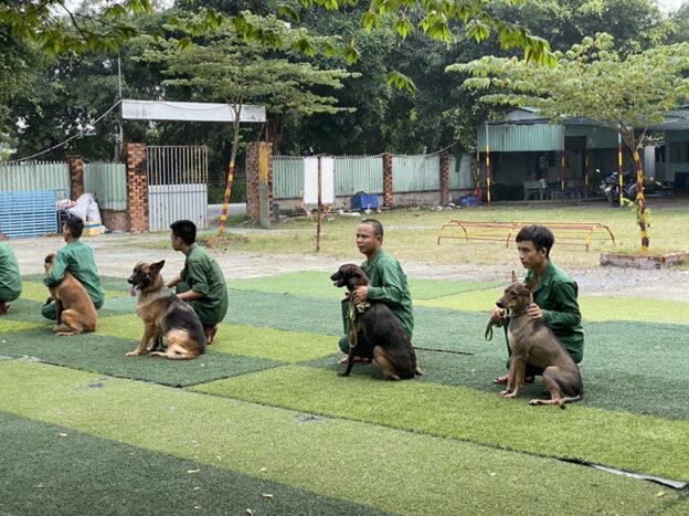 Trường huấn luyện chó cảnh uy tín tốt nhất Trung Đức