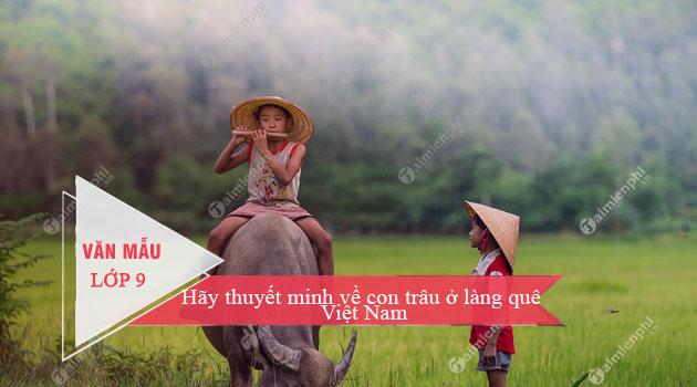 Bài văn thuyết minh về con trâu ở làng quê Việt Nam số 2